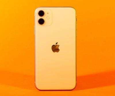 Apple may release a new iPhone in early 2021 that would look a lot like the iPhone 12 with one major feature missing