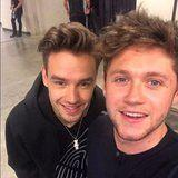 Liam Payne and Niall Horan Had a One Direction Reunion and We Need a Moment