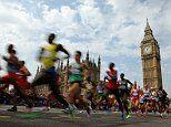 Single gene mutation helped humans become long distance runners