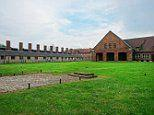 Tourists fined for stealing bricks from the crematorium at Nazi death camp Auschwitz