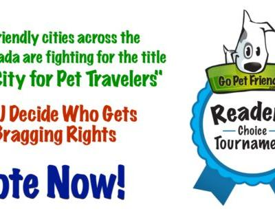 Vote Now! Round 2: 2018 Best City for Pet Travelers Tournament