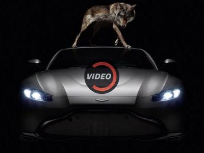 Aston's New Vantage Unleashes Its Inner Beast In Video Debut