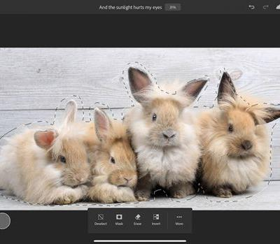 Adobe Adds Refine Edge Brush and Rotate Canvas Tool to Photoshop for iPad