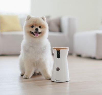 We tried the Furbo dog camera that lets you monitor and play with your pet from afar - here's what it's like to use