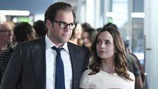 CBS Defends Michael Weatherly After Sexual Harassment Allegations: 'He's A Dad'