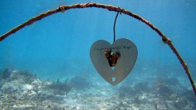 Love Grows Beautiful Things at Four Seasons Resort Seychelles
