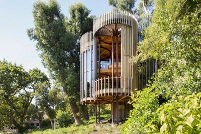 Tree House / Malan Vorster Architecture Interior Design