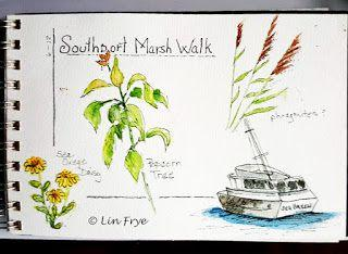 Journal - More from our Marsh Walk