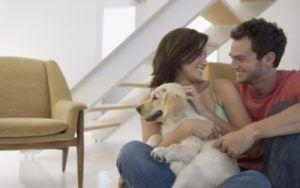 Dogs Are More Than Just Welcome At This Apartment Complex - They're Required!