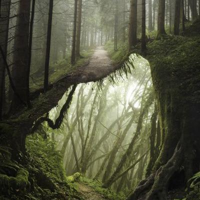 Lovely Photo Manipulations Utilizing Stock Photography by Justin Peters