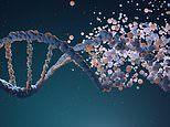 Largest twin study to-date finds 40 percent of diseases are driven by DNA
