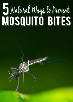 5 Natural Ways to Prevent Mosquito Bites