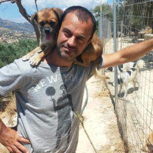 This Dentist Gave Up A Successful Career To Save The Lives Of Abandoned Dogs