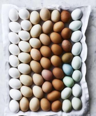Saturday Food Section: A Guide to Buying the Best Eggs at the Grocery Store