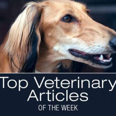Top Veterinary Articles of the Week; SAM-e for Dogs, Veterinary Specialists, and more