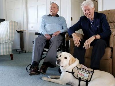 Former President George H. W. Bush welcomes service dog into family