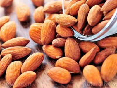 A diet rich in nuts like almonds is found to drastically improve colon cancer survival