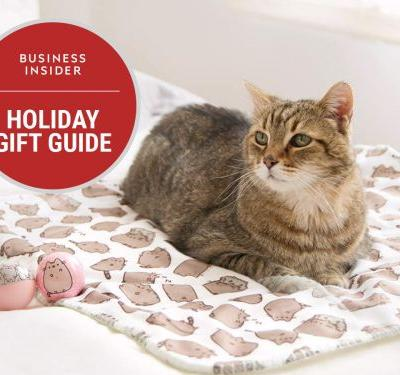 20 cat-approved gifts for your fancy feline