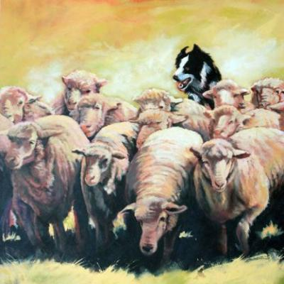 """Original Western Landscape Painting, Sheep, Herd, Border Collie,Ranching """"MOVE"""" Colorado Artist Nancee Jean Busse, Painter of the American West"""