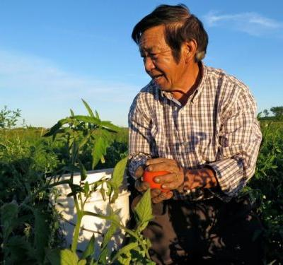 Hmong Farmers Are Supporting the Black Lives Matter Movement in Minnesota