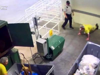 Deputy fired after video shows him kicking inmate who gave cookie to bird