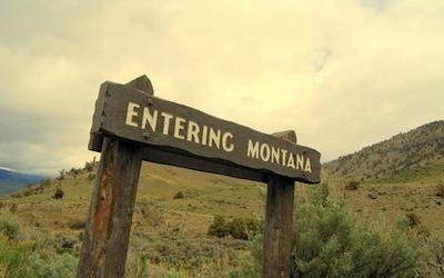 IG gets Bipartisan call for FSIS misconduct investigation in Montana