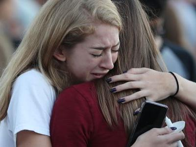 'You weren't there, you don't know how it felt': Students from the Parkland high school shooting rebuke a Fox News contributor's politicized tweets