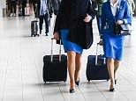 Cabin crew have a higher risk of ALL cancers, Harvard study finds