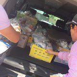 People Are Doing Anything They Can to Help Victims of the Disastrous Mexico Earthquake