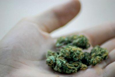 Cannabis delivery startup Eaze confirms theft of some user data from service provider