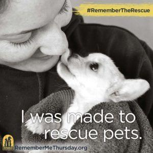September 28 is RememberMeThursday RememberTheRescue