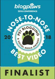 Excited To Be A Finalist For BlogPaws Pet Video Of The Year Award