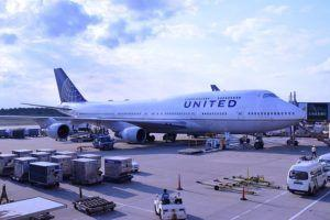 United Airlines Suspends Flying Dogs In Cargo