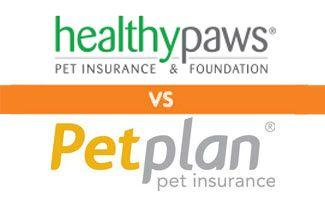 Healthy Paws vs Petplan: Who Comes Out on Top?