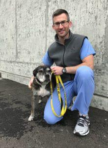 Furry 5K supports medical needs at the Seattle Animal Shelter