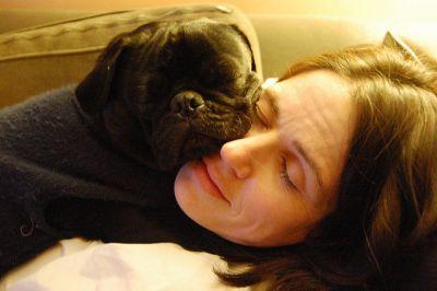3 Great Ways to Strengthen Your Bond With Your Pug