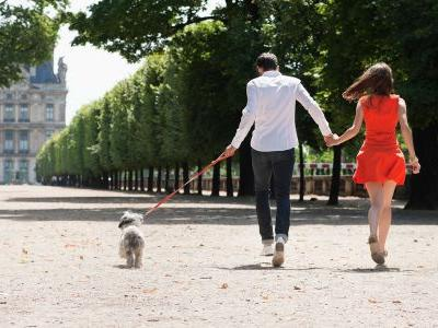 Europe for Your Furry Friends: These European Getaways Are Perfect for Pets