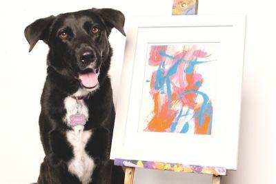 Arbor the Pooch Picasso Paints Abstracts to Help Dogs in Need