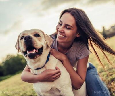 Fitness trackers for dogs? New range of smart devices being designed to prevent your pet from becoming fat