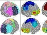 Brain scans could reveal who is more skilled at their job