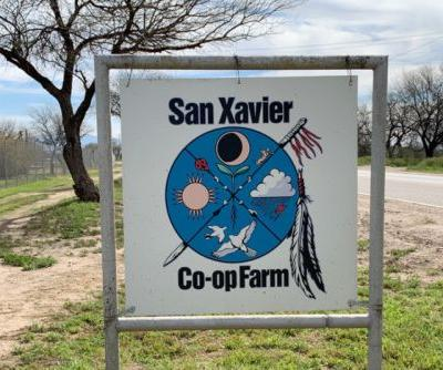 An Indigenous Community Finds its Agricultural Roots in Tucson's San Xavier Farm