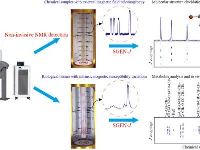 A Single-Scan Inhomogeneity-Tolerant NMR Method for High-Resolution 2D J-Resolved Spectroscopy
