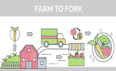 Technology gives transparency to transportation food safety