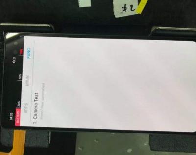 Galaxy S10+ prototype has a strange notch