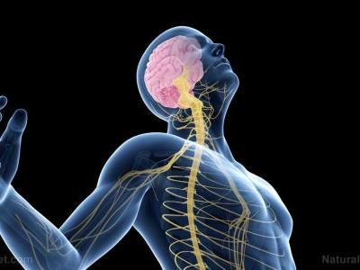 Excessive calcium in your cells may increase your risk of developing Parkinson's