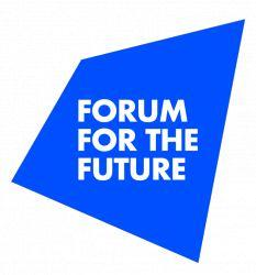 Senior Global Development Manager / Forum for the Future / Brooklyn, NY