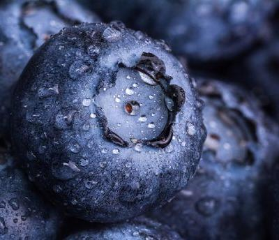 'Go for the athlete market with berries,' says keynote speaker at Berry Health Benefits Symposium