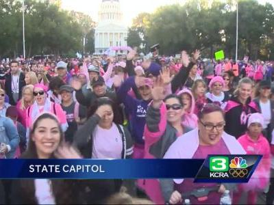 Sea of pink surrounds capitol for breast cancer walk