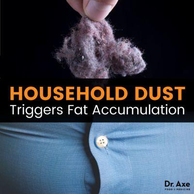 House Dust Causes Fat Gain? Shocking New Lab Test Results