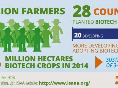 Biotech Crops Show Sustained Growth and Benefits in 2014; Global Plantings Increase by 6 Million Hectares